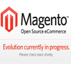 Magento site development